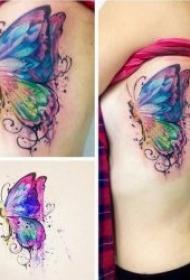 蝴蝶紋身圖案 唯美而妖嬈彩繪或黑灰的蝴蝶紋身圖案