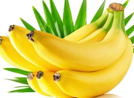 一組黃黃的香蕉特寫圖片欣賞