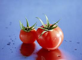 又圓又紅的西紅柿像蘋果