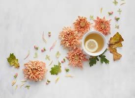 一組超美的鮮花擺拍圖片欣賞