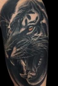 紋身老虎  9款威風勇猛的老虎紋身圖案