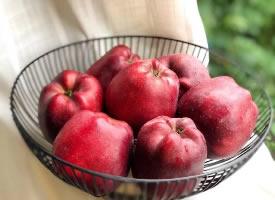 一組紅紅的蘋果圖片