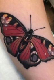 紋身蝴蝶素材 一組女生漂亮的蝴蝶紋身手稿和作品