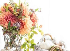 一組日本攝影的花束圖片