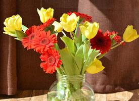 花瓶中的花卉唯美圖片桌面壁紙
