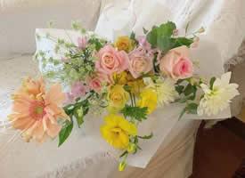 一組色彩柔和的花束圖片欣賞