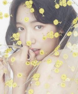 樸信惠清新少女感寫真圖片