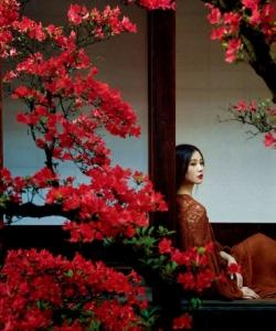 劉詩詩清雅仙氣時尚寫真圖片
