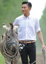 刘德华温馨显熟男风采与斑马入境
