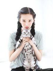 黄灿灿少女与猫写真 萌态可人相映成趣