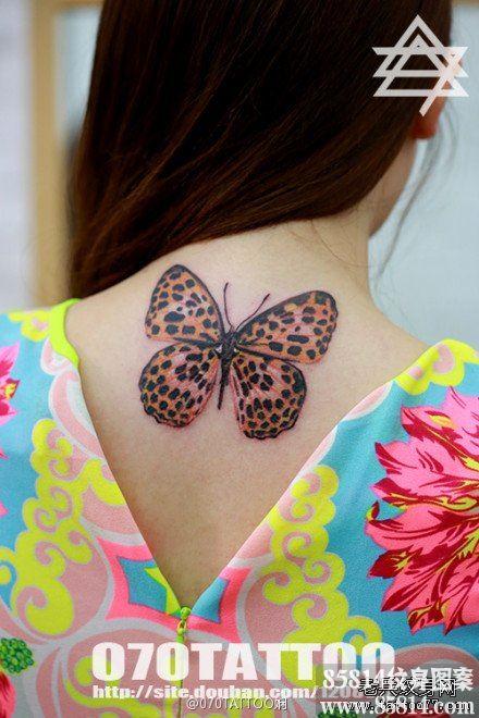 女生后脖子精美漂亮的豹纹蝴蝶纹身图案