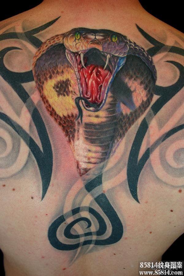 后背一款逼真眼镜蛇纹身图案
