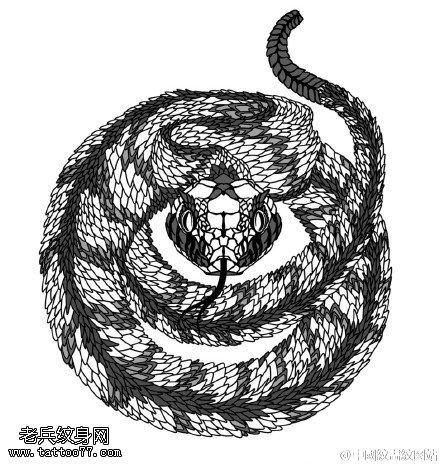 惊悚的眼镜蛇纹身图案