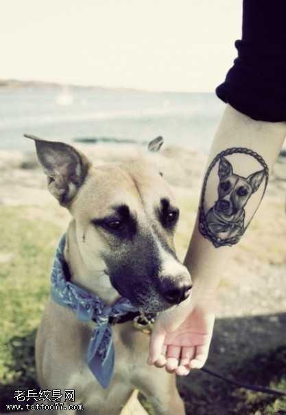 手臂小狗肖像纹身图案