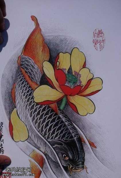 手稿中华锦鲤纹身图案