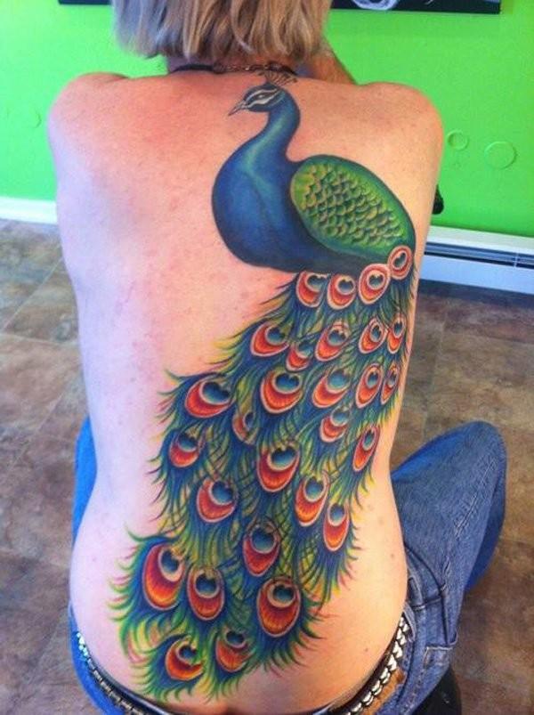 女生背部惊人的彩色美丽孔雀纹身图案