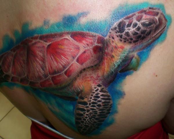 美丽的写实水彩乌龟纹身图案