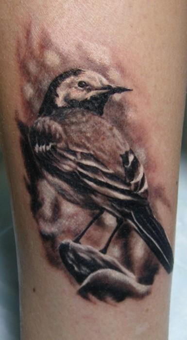 写实的黑灰麻雀纹身图案