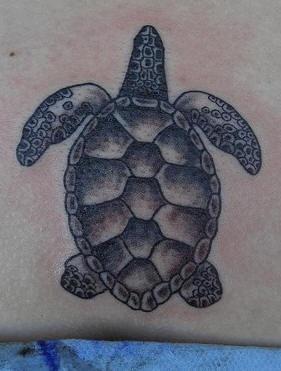 黑色精致的小乌龟纹身图案