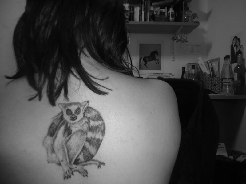 可愛的黑灰狐猴背部紋身圖案